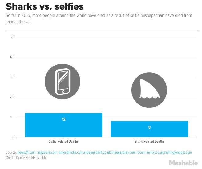 Sharks vs Selfies