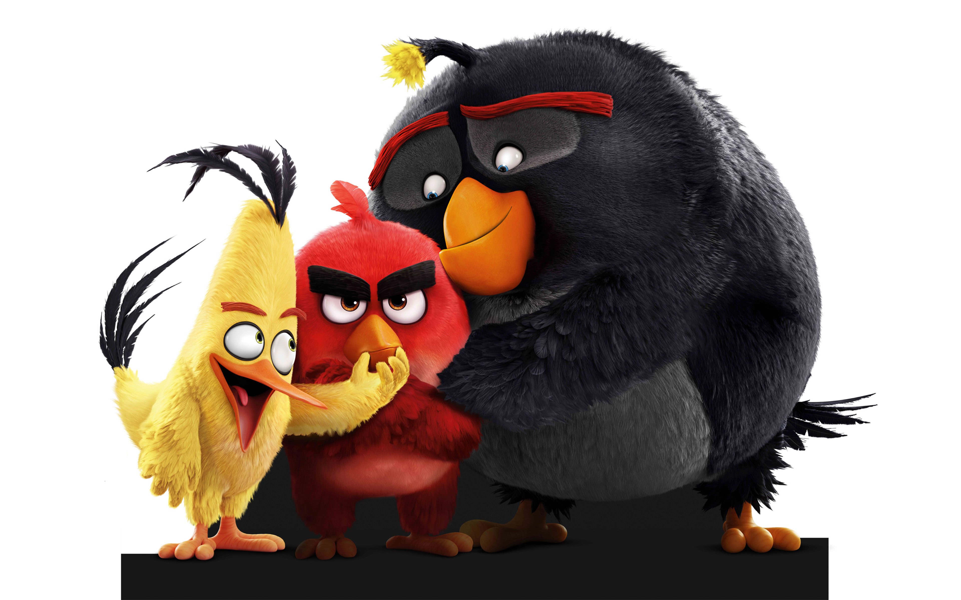 Photo of The Angry Birds Movie Movie Review