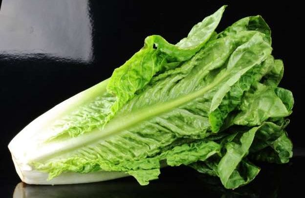 Photo of Throw away your romaine lettuce which may have E. coli