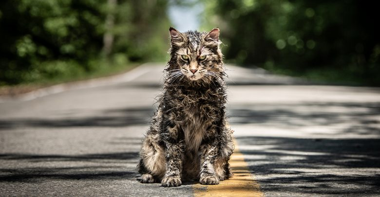 Photo of Pet Sematary Movie Review
